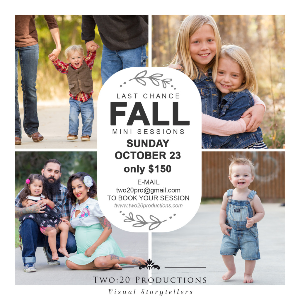 TWO20-2016-fallminisessions